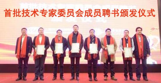 【创新发展 强势出击】 六大分会齐聚,中国光伏领跑者创新论坛技术专家委员会正式成立